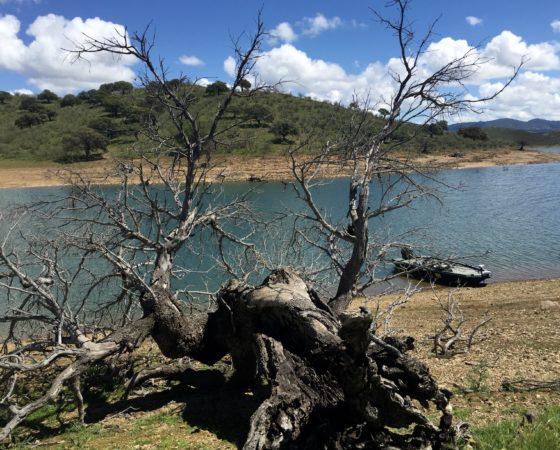Pause déjeuner sur le lac de la Serena