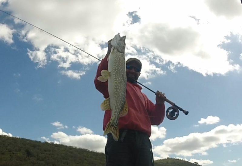 Pêche au carnassier à la mouche en Extremadura, Espagne