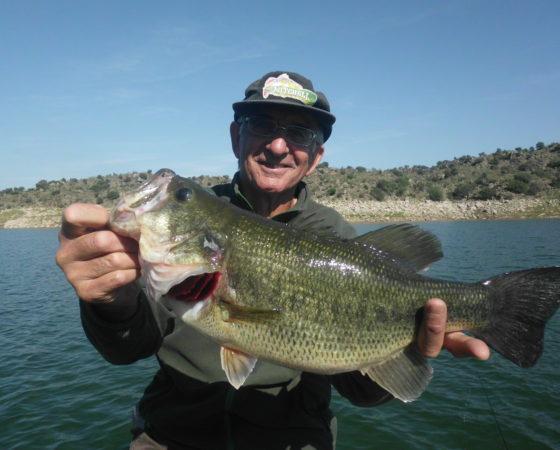 enorme black bass