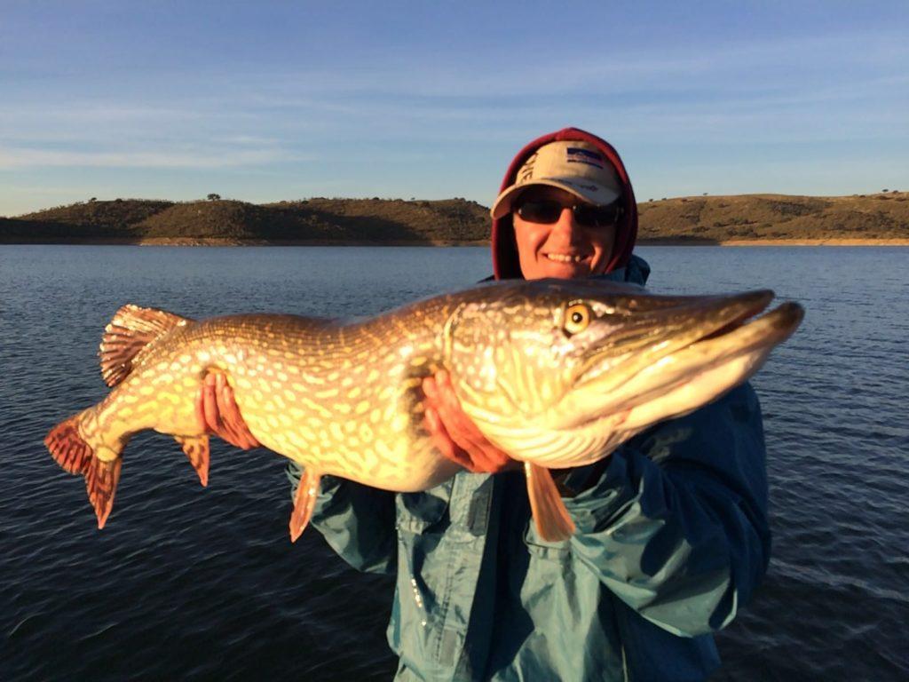 Guide de pêche au gros brochet espagne