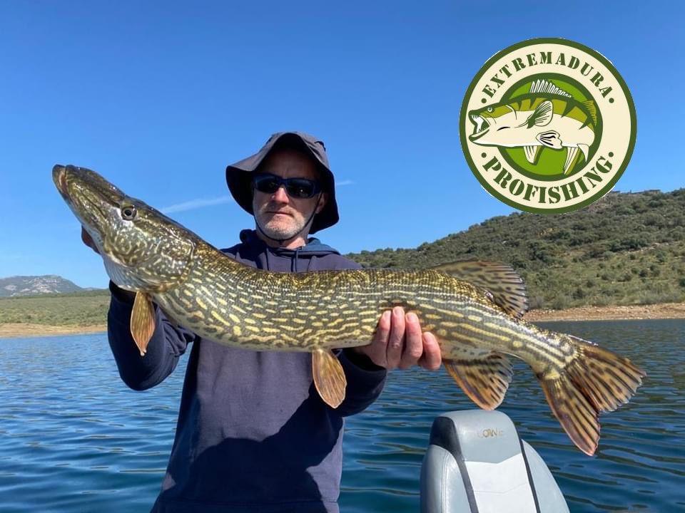 Pêche du brochet en bass boat en Espagne