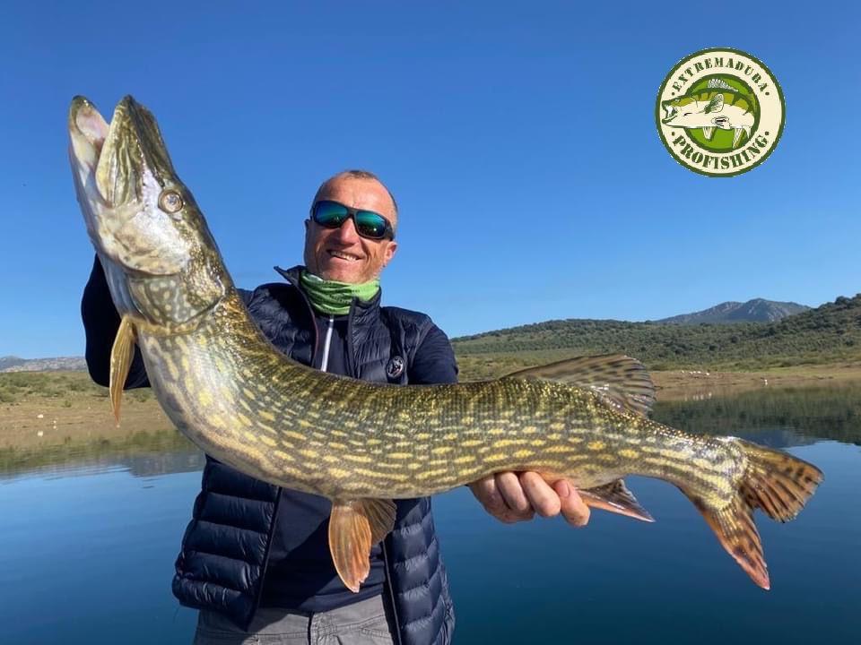 Pêche au grand brochet en Espagne