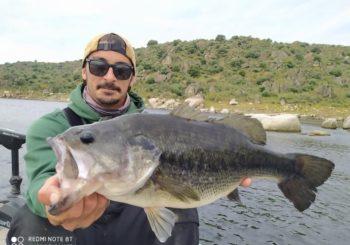 Pêche au bass a Alcantara